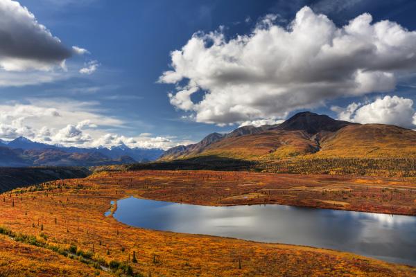 Discover amazing AlaskaStock